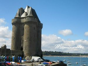Vacances Bretagne juin 2012 022