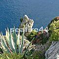2012_05260525_capri_côte sud de l'île