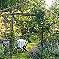 Rituel pour protéger son jardin avec les esprits de la nature