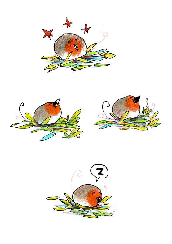 unamourd_oiseau6