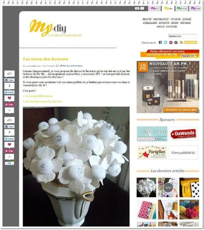 article My DIY NOV 2011