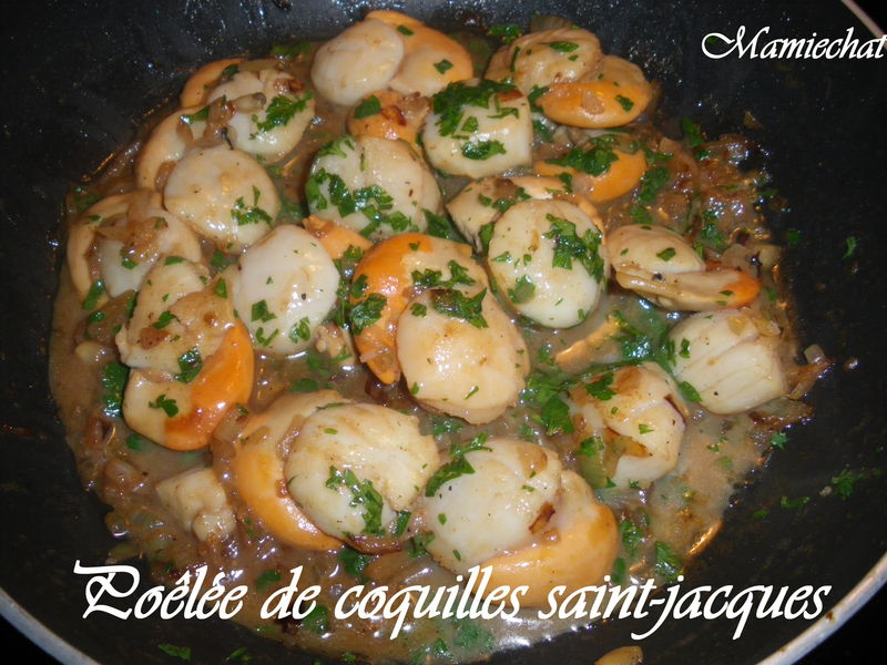 Po l e de coquilles st jacques le blog de chantal76 - Cuisiner les coquilles saint jacques ...
