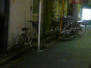 Canalblog_Rues_Plantes14_Asakusa_D_tail01
