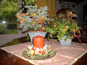 plantes_table_salon