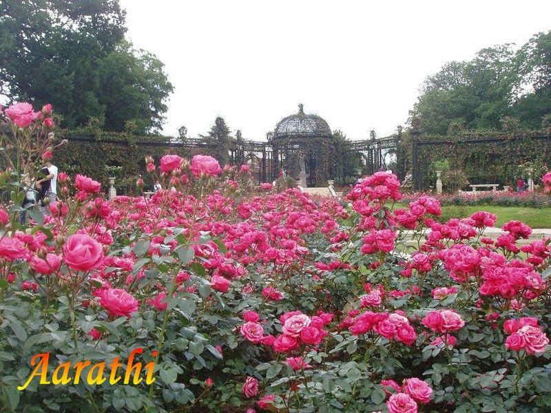 La Roseraie du Val-de-Marne, L'Haÿ-les-Roses