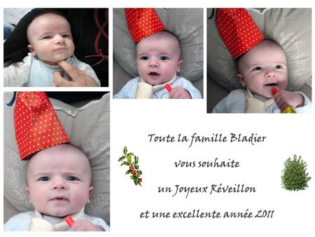 nouvel_an_2011_small