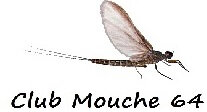 CM64 Logo Mouche Texte Mini 2