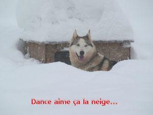 danceblog