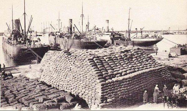 Oran- 061- travail sur les quais