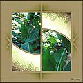 bambouseraie_10