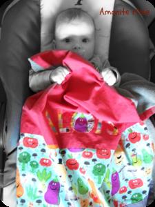 Aloïs et sa couverture