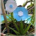 Envie de fleurs en céramique, de bleu , de blanc...............