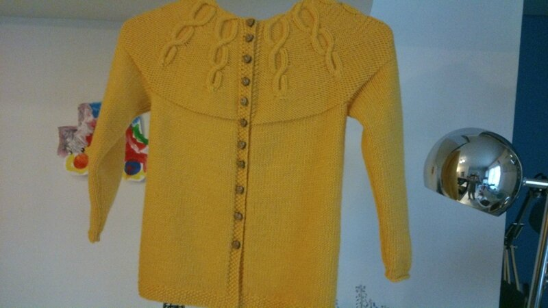 gilet miss Korrigan 6A Partner 3,5 coloris jaune (4)