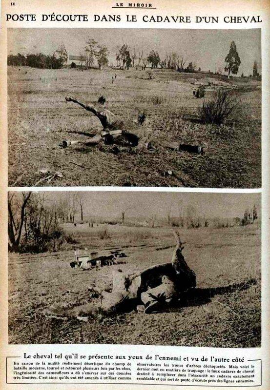 Cadavre chevaux miroir 10 02 1918