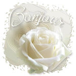 _imagesBlogs