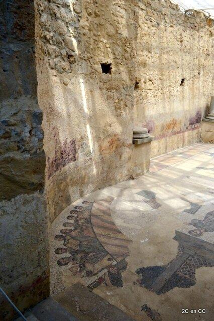 Mosaïque - Palestre - Villa Romana del casale - Piazza Armerina - Sicile