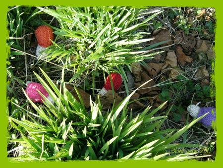 mars_2011_00022