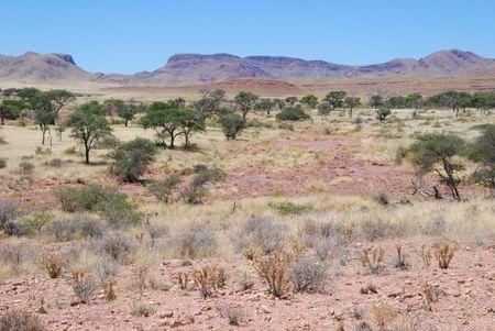 Namibie (357)