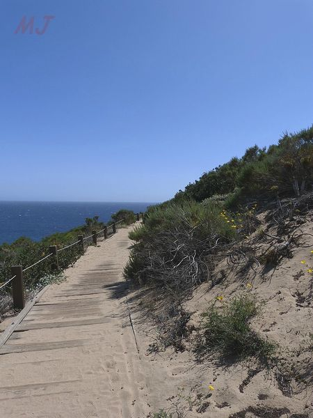 POINT DUME TER