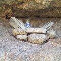 2-Capu di Muru-Petite Vierge nichée dans un creux de rocher
