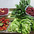 Juillet - montrez le bout de votre nez fruits et légumes adorés