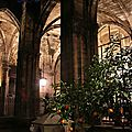 Barcelone - Barri Gotic, Catedral_5168