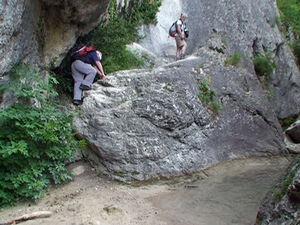 grimpe