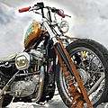 HARLEY DAVIDSON - Sportster 883 - Customized