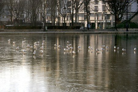 Canal_Ourcq_02