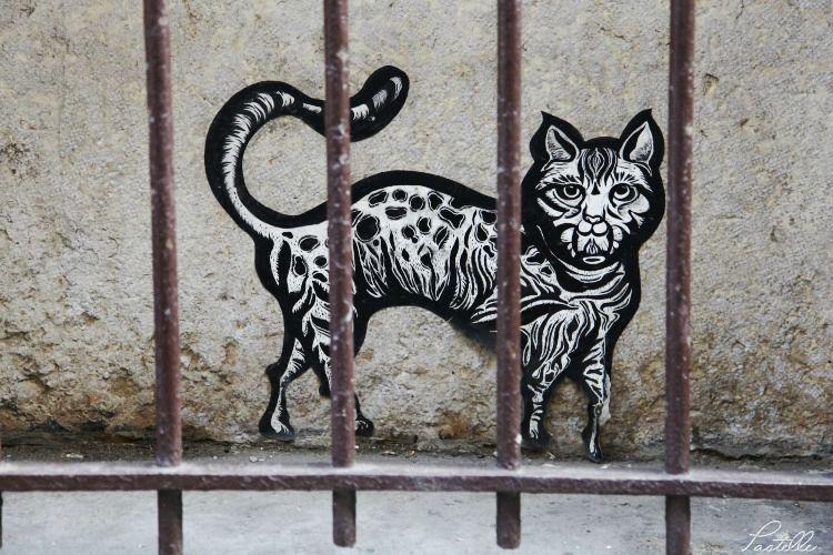 Chat prison_13 16 04_1397