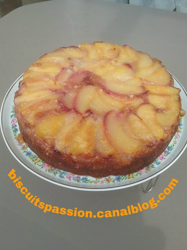 Gâteau renversé aux nectarines blanches et aux amandes 092