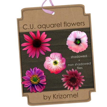 Preview_aquarel_CU_flowers_by_Krizomel