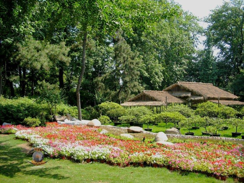 SHANGHAI BO 11 jardin