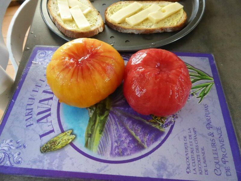 27-tomates, tomates tartines (6)