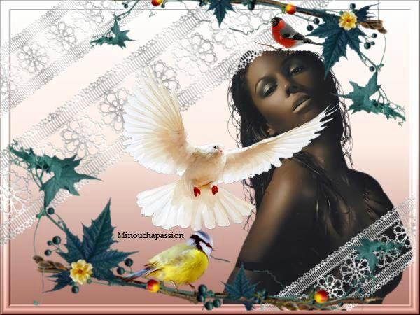 afrique (2)