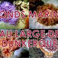 20000 LIEUX SOUS LES MERS
