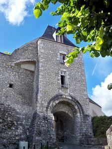 Le Château de Montargis 009