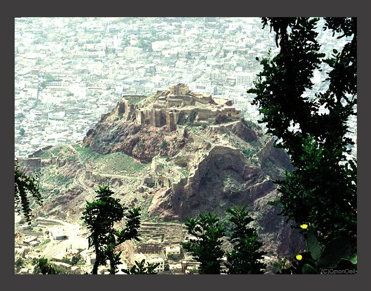 yemen107