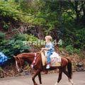 ballade à cheval depuis Vaipaee_01