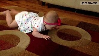 dog_shows_baby_how_to_crawl