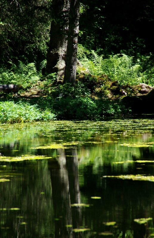 Lac de Pététoz (18)