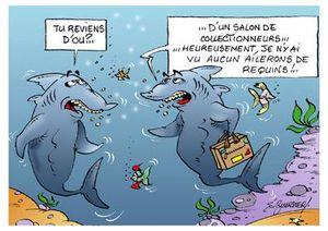 Requin collectionneur