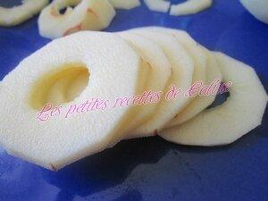Tartiflette aux pommes et reblochon04