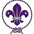 le scout coute