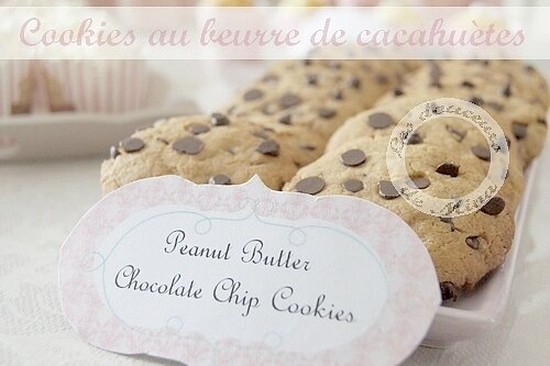 Peanut_Butter_Cookies031