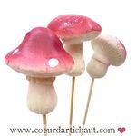 champignons_3__7_