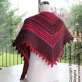 Nouveau modèle chauffe épaule - super easy shawl