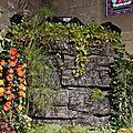 St Fiacre 2016-112