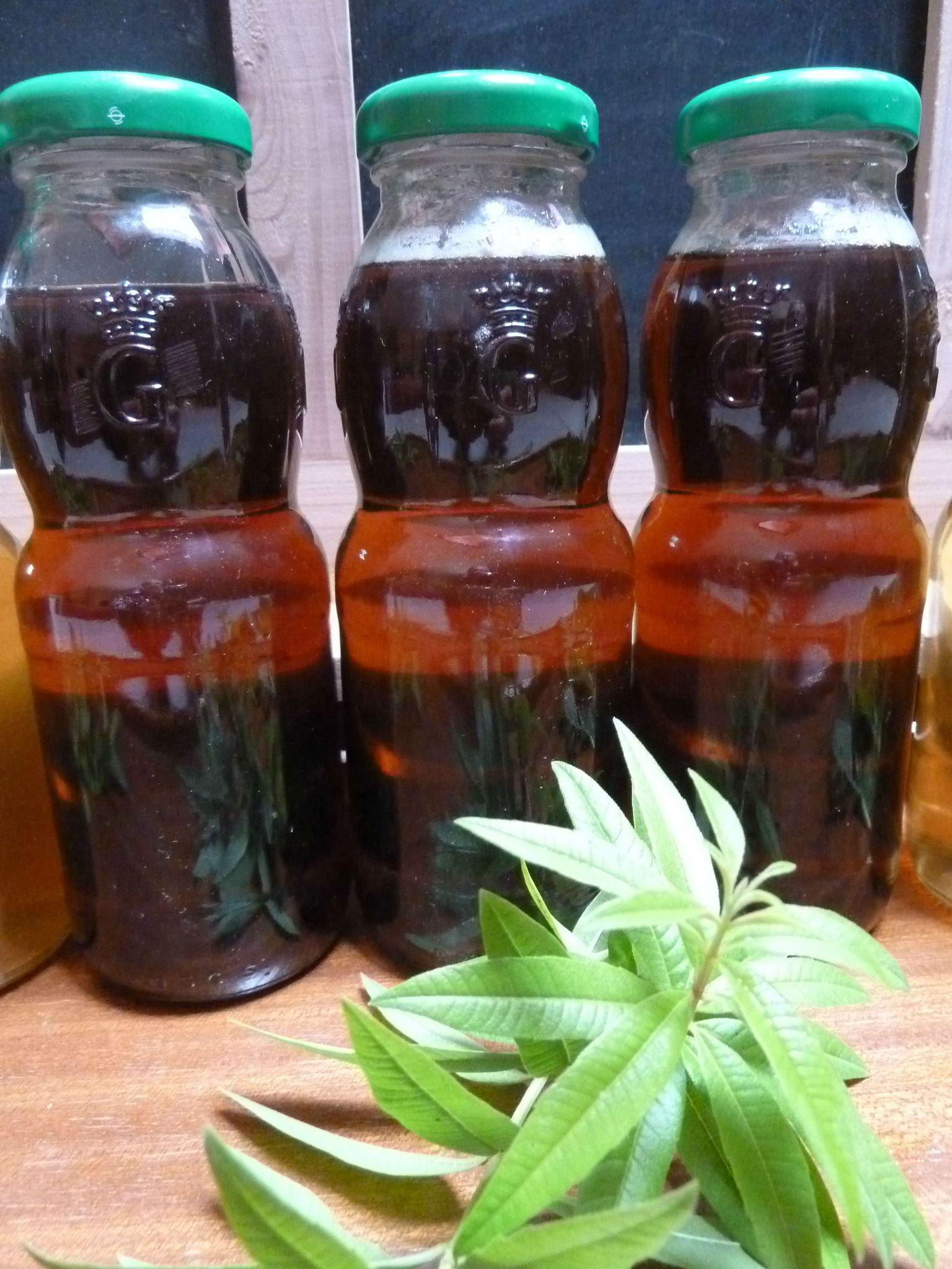 sirop de verveine citronnelle -- www.passionpotager.canalblog.com