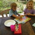 Fabriquer une carte d'anniversaire avec une boite de céréales et des fleurs du jardin